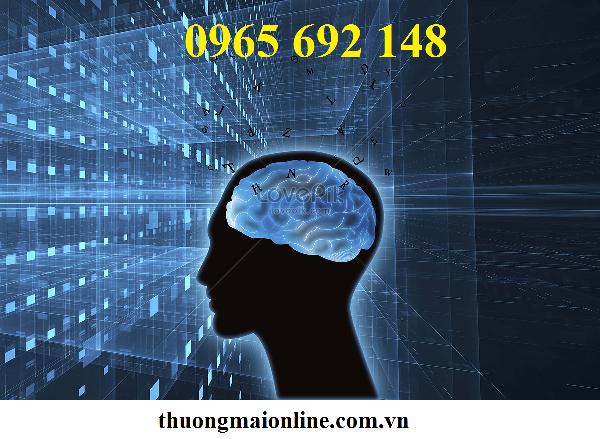 7 thói quen gây tổn thương não nghiêm trọng con người cần dừng ngay lập tức